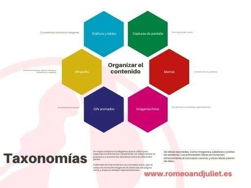 Taxonomías en WordPress